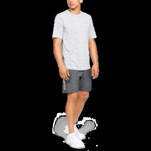 Pánské šortky Woven Graphic Wordmark Grey - Under Armour